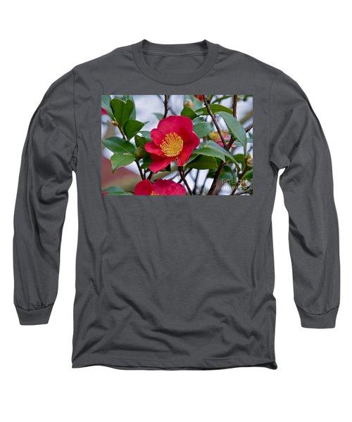 Single Petal Red Camellia Flowers Art Print Long Sleeve T-Shirt