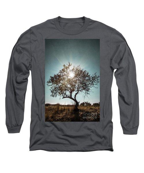 Single Tree Long Sleeve T-Shirt by Carlos Caetano