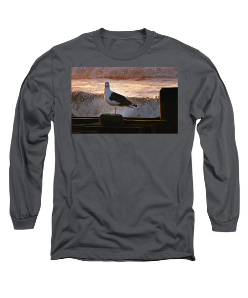 Sittin On The Dock Of The Bay Long Sleeve T-Shirt by David Dehner