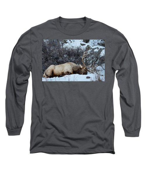 Sleeping Elk Long Sleeve T-Shirt