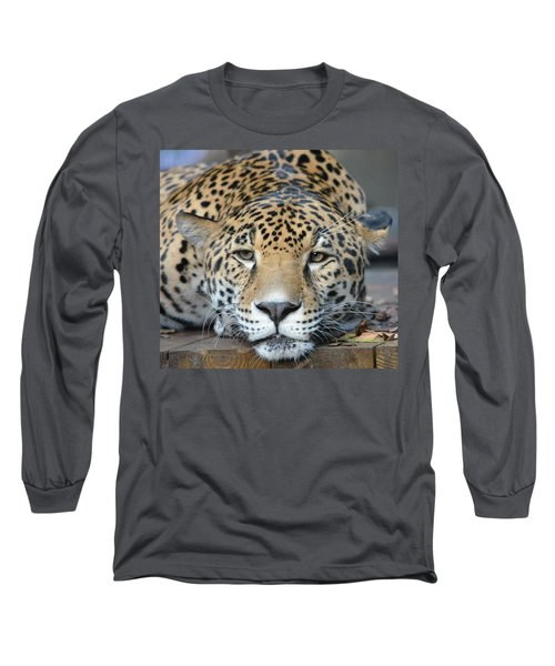 Sleepy Jaguar Long Sleeve T-Shirt by Richard Bryce and Family