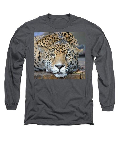 Sleepy Jaguar Long Sleeve T-Shirt