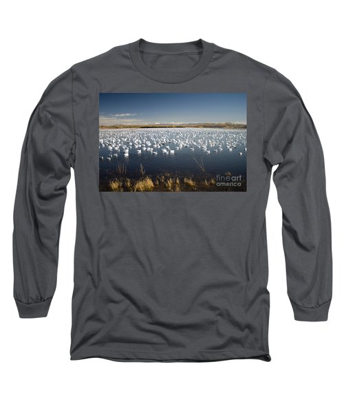 Snow Geese - Bosque Del Apache Long Sleeve T-Shirt