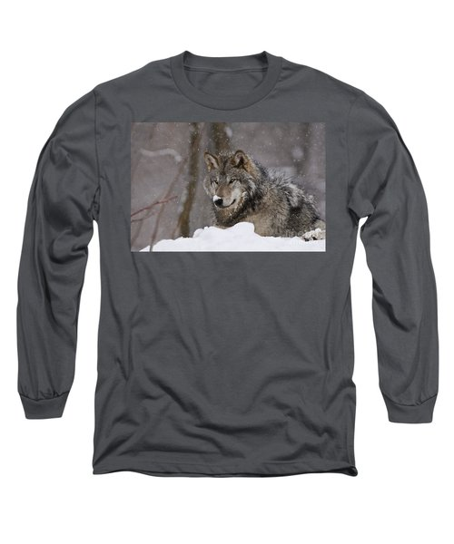 Snow Nose Long Sleeve T-Shirt