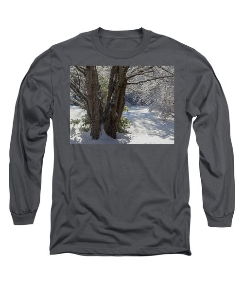 Snow Sparkles Long Sleeve T-Shirt by Dianne Cowen