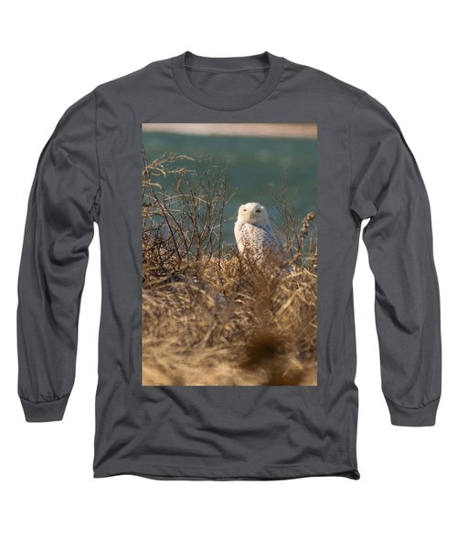 Snowy Owl At The Beach Long Sleeve T-Shirt