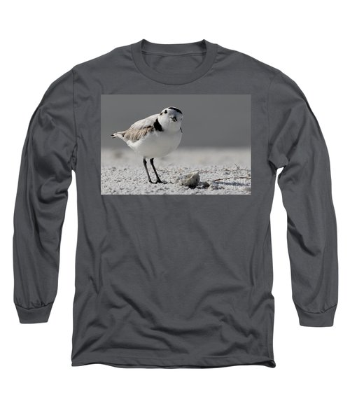 Snowy Plover Long Sleeve T-Shirt