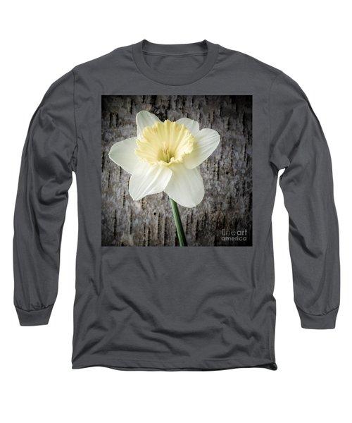 Spring Daffodil Square Long Sleeve T-Shirt