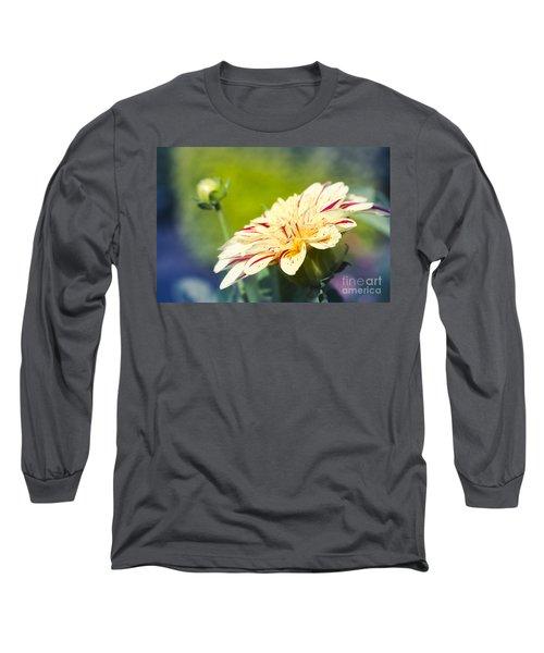 Spring Dream Jewel Tones Long Sleeve T-Shirt
