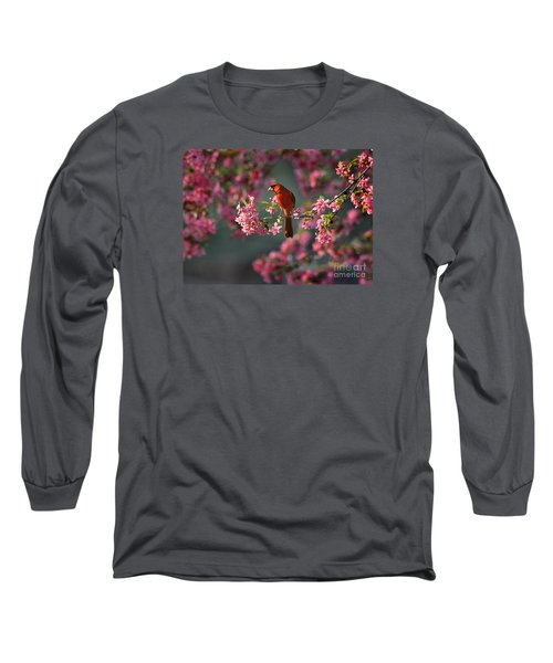 Spring Morning Cardinal Long Sleeve T-Shirt by Nava Thompson