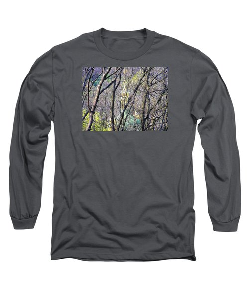 Spring Long Sleeve T-Shirt by Oleg Zavarzin