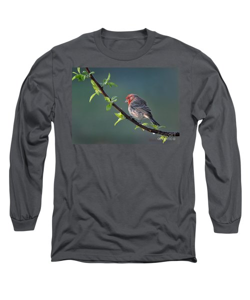 Song Bird In Spring Long Sleeve T-Shirt by Nava Thompson