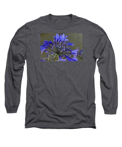 Spring Time Blues Long Sleeve T-Shirt by Menachem Ganon