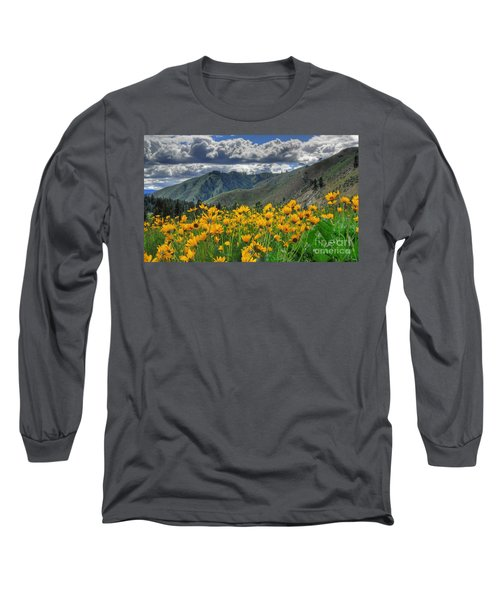 Springtime At Gallagher Long Sleeve T-Shirt