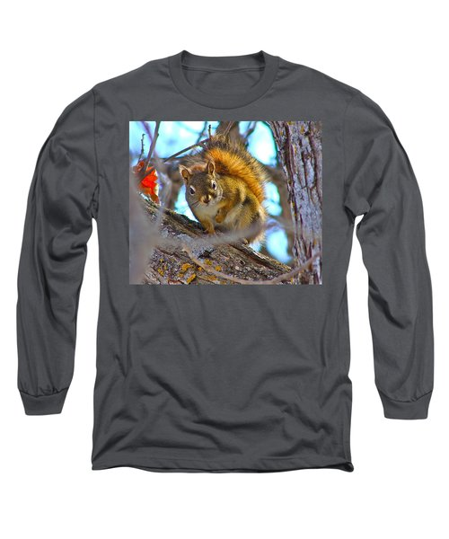 Squirrel Duty. Long Sleeve T-Shirt by Johanna Bruwer
