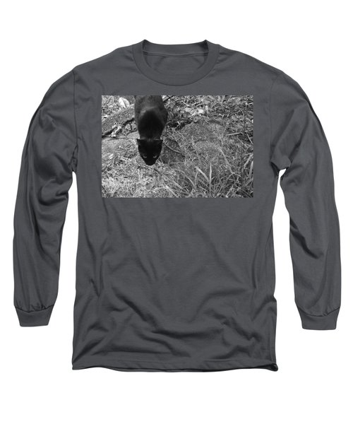 Stalking Cat Long Sleeve T-Shirt by Melinda Fawver