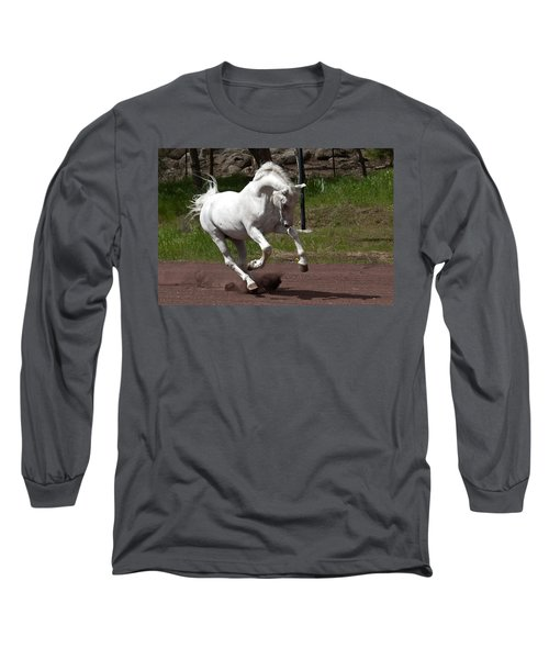 Stallion Long Sleeve T-Shirt by Wes and Dotty Weber