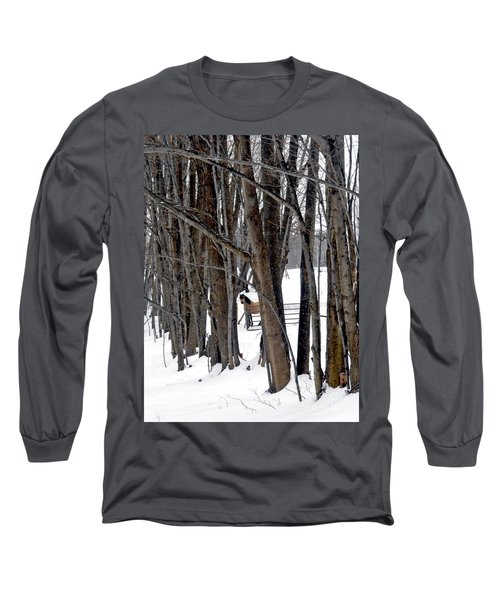 Stallion In The Woods Long Sleeve T-Shirt by Patricia Keller