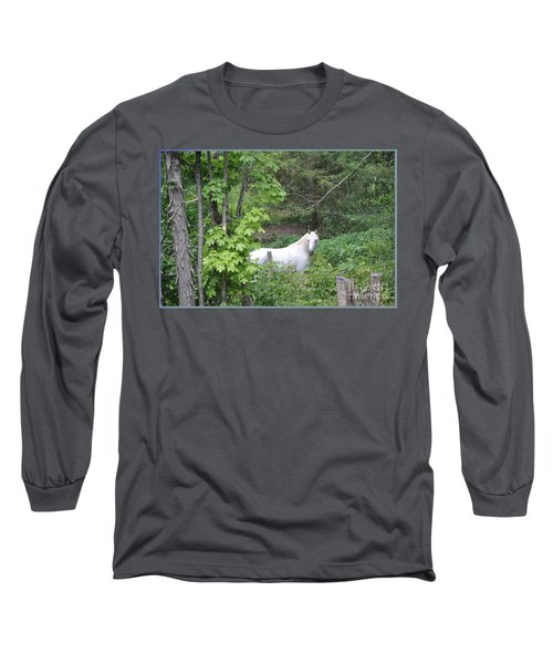 Stallion On Independence Day Long Sleeve T-Shirt by Patricia Keller