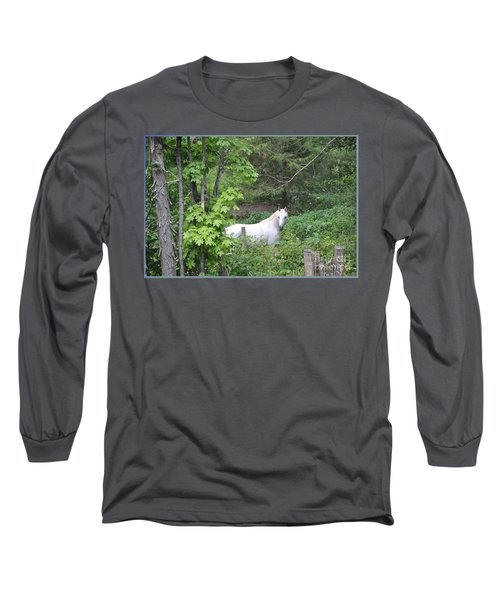 Stallion On Independence Day Long Sleeve T-Shirt