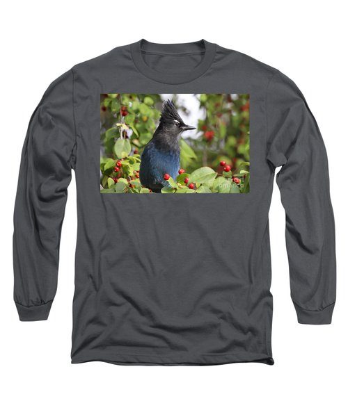 Steller's Jay And Red Berries Long Sleeve T-Shirt