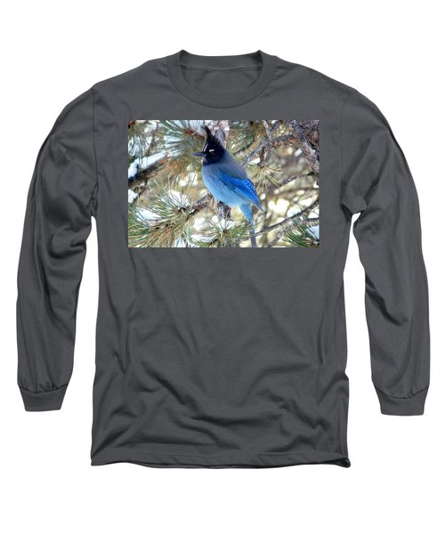 Steller's Jay Profile Long Sleeve T-Shirt