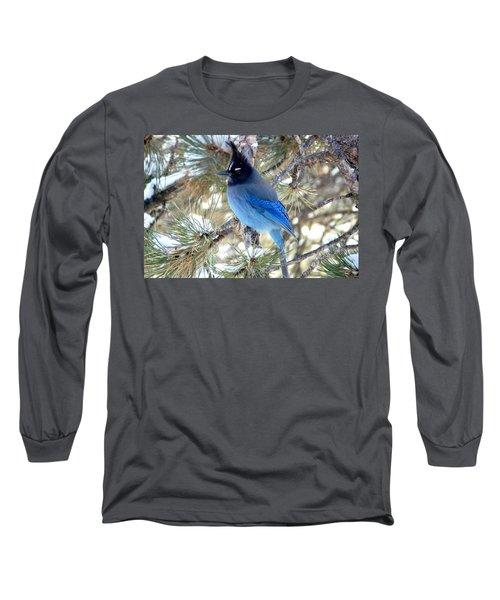 Steller's Jay Profile Long Sleeve T-Shirt