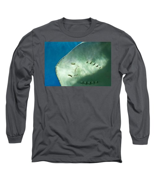 Long Sleeve T-Shirt featuring the photograph Stingray Face by Eti Reid