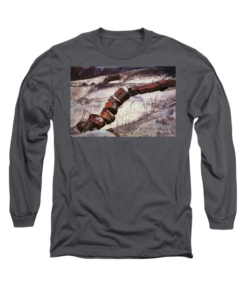 Stone Trees - 336 Long Sleeve T-Shirt
