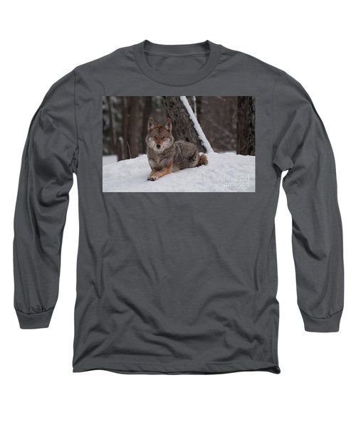 Striking The Pose Long Sleeve T-Shirt by Bianca Nadeau