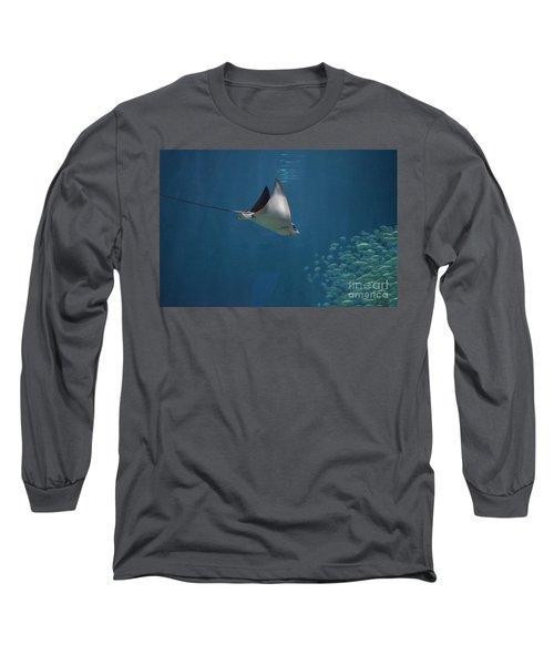 Stringray Heading Towards Fish Long Sleeve T-Shirt by DejaVu Designs
