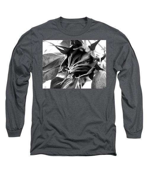 Long Sleeve T-Shirt featuring the photograph Sunflower Beginning by Sandi OReilly