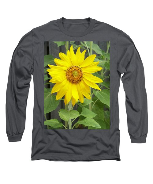 Sunflower Long Sleeve T-Shirt by Lisa Phillips