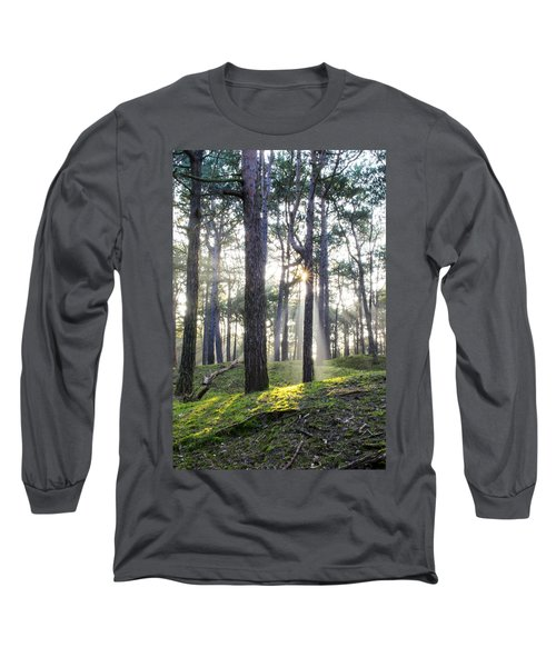 Sunlit Trees Long Sleeve T-Shirt
