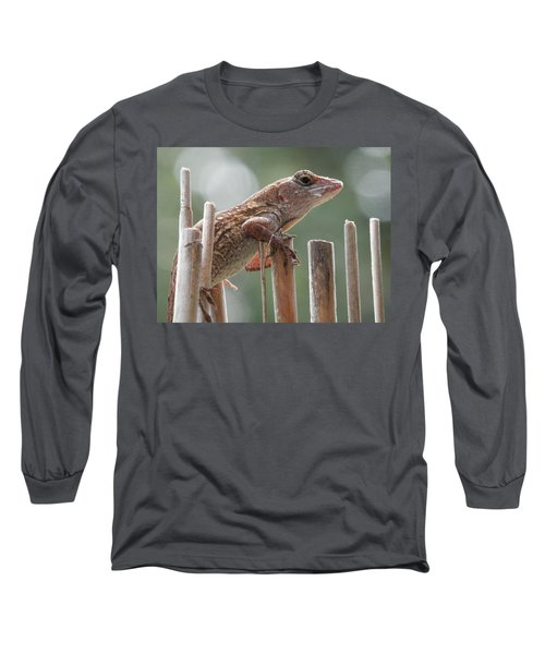 Sunning Lizard Long Sleeve T-Shirt