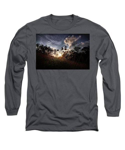 Sunset On Daisy Long Sleeve T-Shirt by Linda Unger