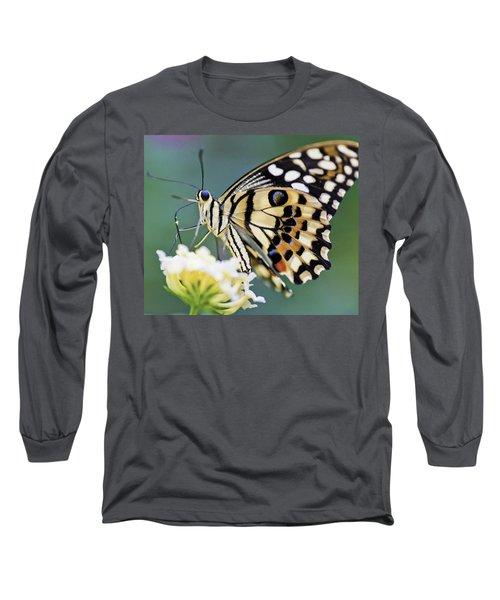 Swallowtail Butterfly Long Sleeve T-Shirt by Maj Seda