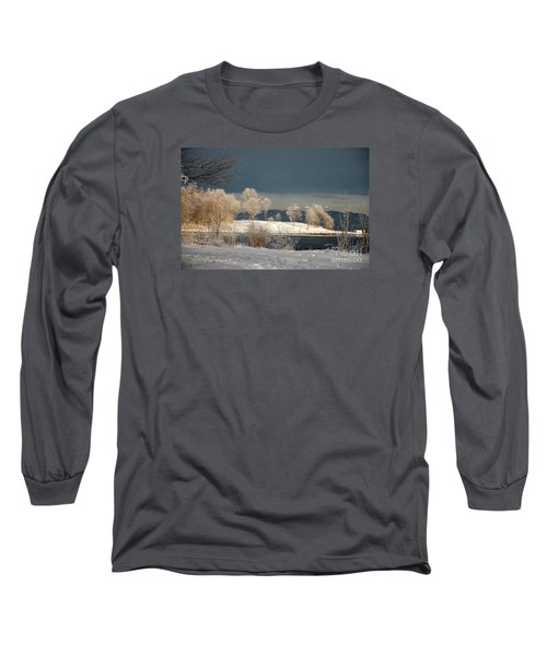 Swans On A Frosty Day Long Sleeve T-Shirt by Randi Grace Nilsberg