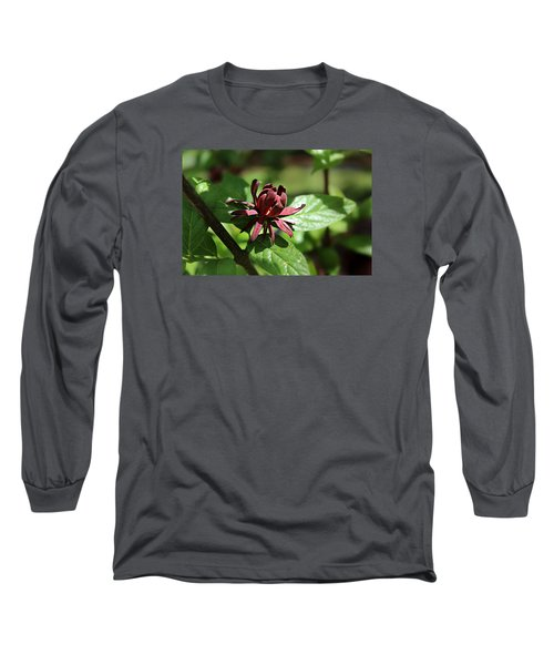 Sweet Shrub Long Sleeve T-Shirt