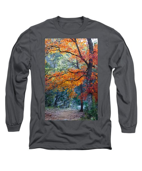 Take A Bough Long Sleeve T-Shirt by Debbie Karnes