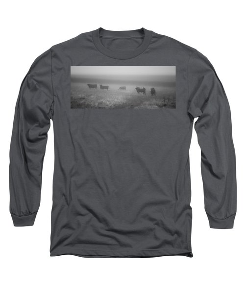 The Graze Long Sleeve T-Shirt