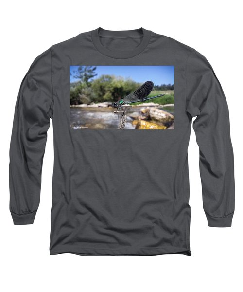 Long Sleeve T-Shirt featuring the photograph The River Dragonfly by Stwayne Keubrick