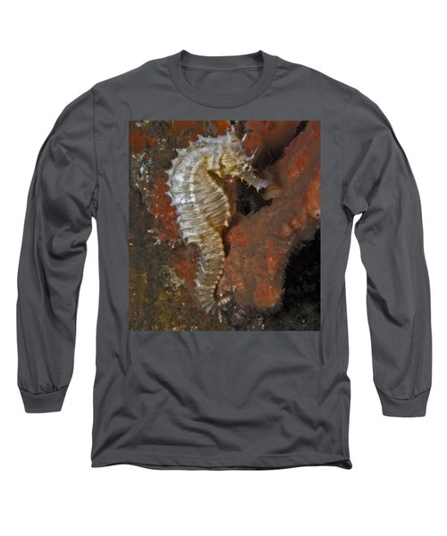 The White Seahorse Long Sleeve T-Shirt