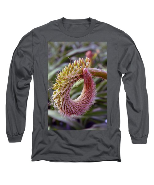 This Bud's For You Long Sleeve T-Shirt by Richard Engelbrecht