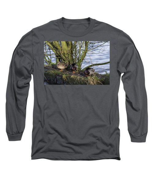 Three In A Row Long Sleeve T-Shirt by Spikey Mouse Photography