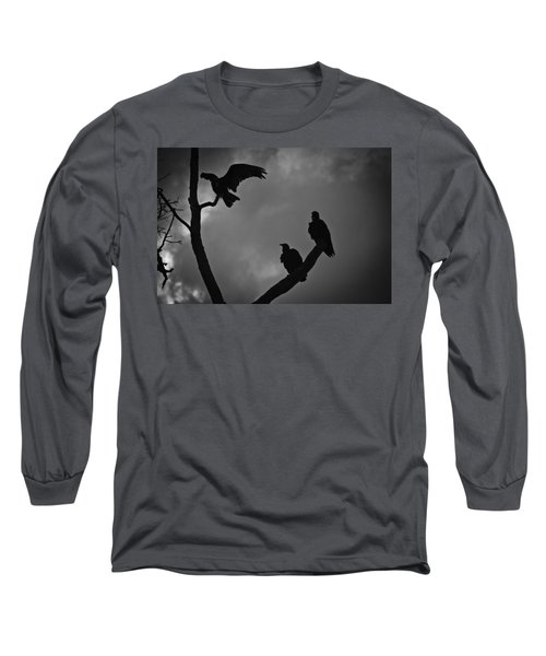 Three Vultures Long Sleeve T-Shirt by Bradley R Youngberg