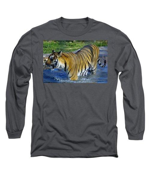 Tiger 4 Long Sleeve T-Shirt