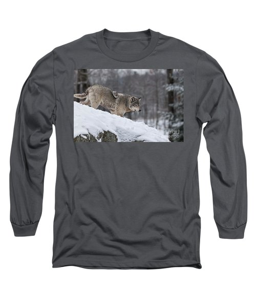 Timber Wolf On Hill Long Sleeve T-Shirt