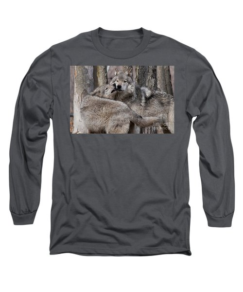 Long Sleeve T-Shirt featuring the photograph Timber Wolves Playing by Wolves Only