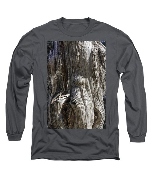 Tree Bark No. 3 Long Sleeve T-Shirt by Lynn Palmer
